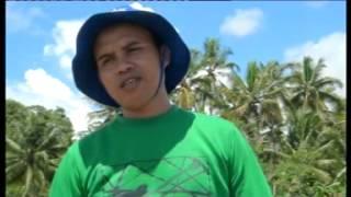 Ti GOLD Kab Banjar