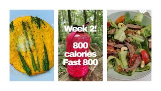 Fast 800 diet week 2 | 800 calories per day | how to do Fast 800 diet