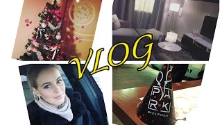VLOG: 2 ГОДА PARK by OSIPCHUK / ИКЕА / ЁЛКА / ALLUREBOX / KATRINA BERRY