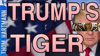Thom Touches Trump's Tiger (w/ John Perkins)