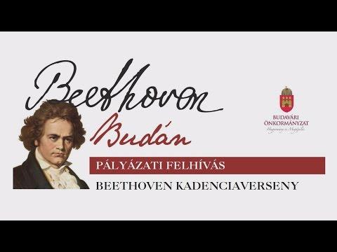 Beethoven Budán 2016 - sajtótájékoztató - video preview image