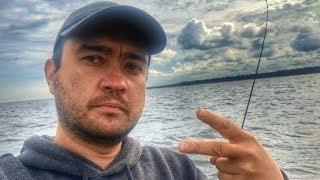 Рыбалка в финском заливе на донку
