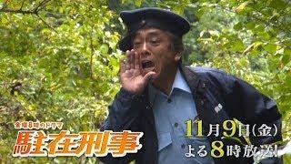 mqdefault - 【金曜8時のドラマ】駐在刑事 第4話