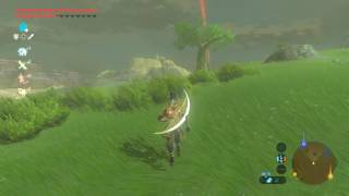 cemu botw cheats - Free Online Videos Best Movies TV shows - Faceclips