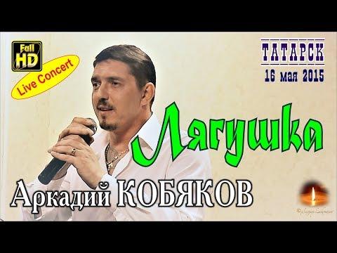 Live Concert/ Аркадий КОБЯКОВ - Лягушка (Татарск, 16.05.2015)