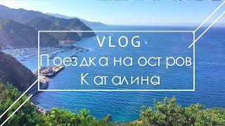 VLOG: Поездка на остров Каталина. Экстрим, природа, вино и другие прелести Калифорнии