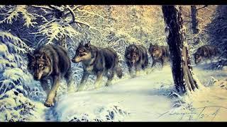 Вне Зоны - Тропою Волчьей
