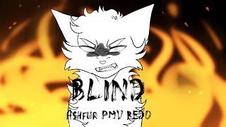 BLIND Ashfur PMV (REDO)