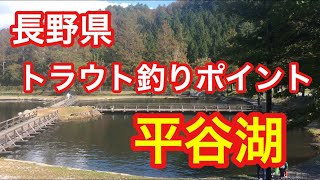 平谷湖フィッシングスポット長野県トラウト釣りポイント