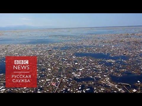 Пластик как угроза: можно ли отказаться от него и чем это поможет?