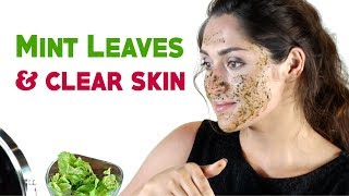 5 minutes beauty tips | How to Use Mint Leaves in Beauty Care