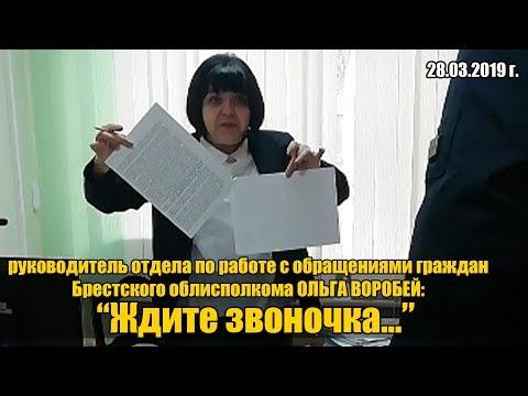 Ольга Воробей на страже Лиса