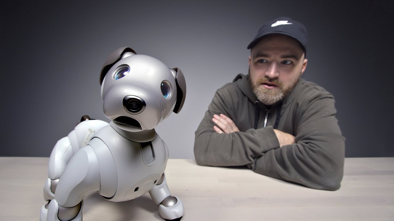 The $3000 Sony Aibo Robot Dog thumbnail