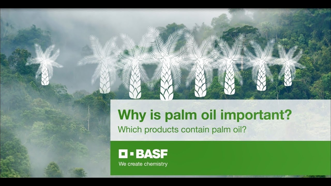 Video: Why is palm oil important? Which products contain palm oil?