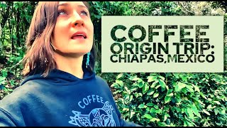 Chiapas, TOUR where some of the BEST COFFEE is grown in the WORLD! Tenejapa Tour w/Cafeologico Cafe!