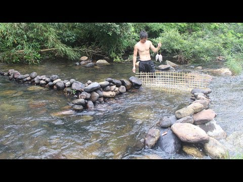 Primitive Technology: Build a stone dam to trap fish and cook fish in the forest of survival