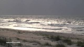 Biloxi - Jimmy Buffett (by way of Jesse Winchester)