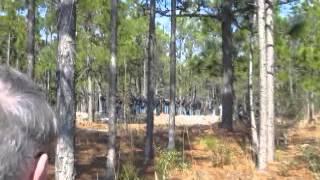 Battle of forks road reenactment 7 - Video Youtube