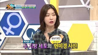 전격비교★ '백색 지방'과 '갈색 지방'의 차이! (with 훈제달걀) | Kholo.pk