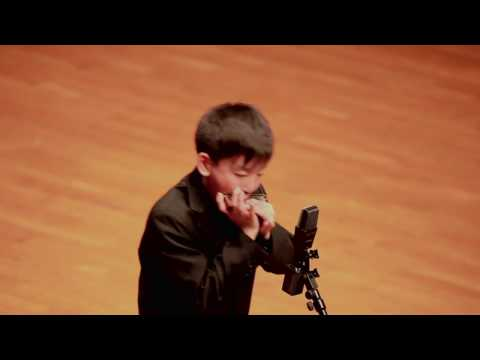 This Boy's Harmonica Skills Will Leave You Speechless
