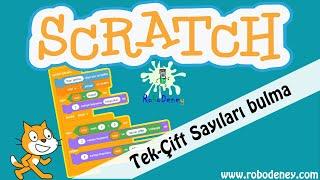Scratch çift-tek sayıları bulma