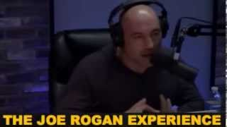Joe Rogan and Ian McCall talk about Mirko Cro Cop