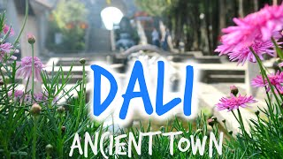 Video : China : Strolling in DaLi 大理 ancient town, YunNan province ...