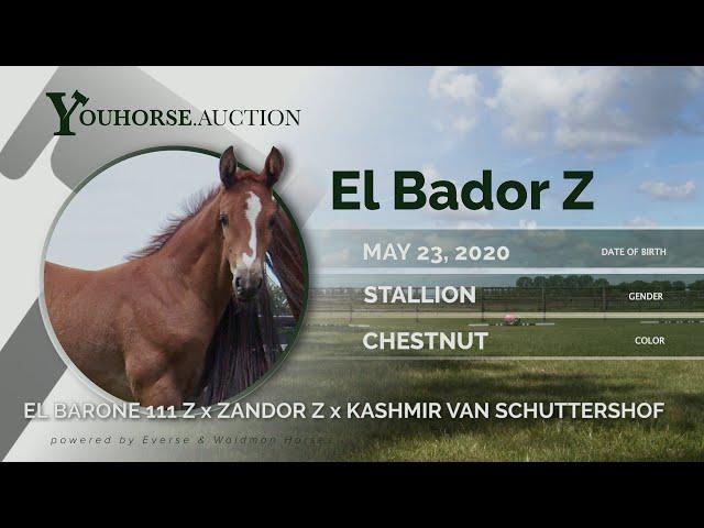 El Bador Z