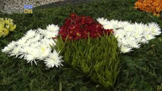 Madeira Flower Festivities April 2016