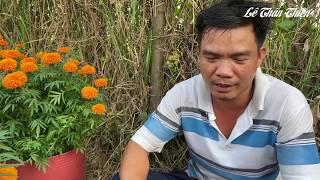 Chuyến buôn hoa Tết bu.ồn nhất cuộc đời của đôi vợ chồng ở Sài Gòn
