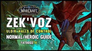 Zek'voz Normal + Heroic Guide - FATBOSS