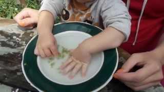 Гнойный нарыв на пальце, гной под ногтем - лечим сами + солевой раствор