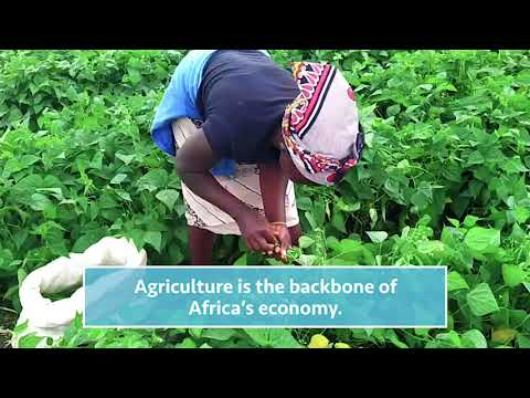 Agriculture Courses - Online