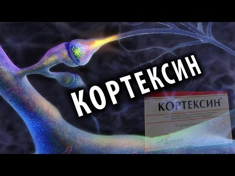 Кортексин: Ноотроп из Мозга Животных