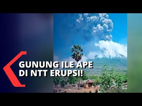 gunung api ile ape erupsi ribuan warga mengungsi dan butuh banyak bantuan