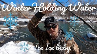 Fly Fishing in the Winter: Where the trout at?