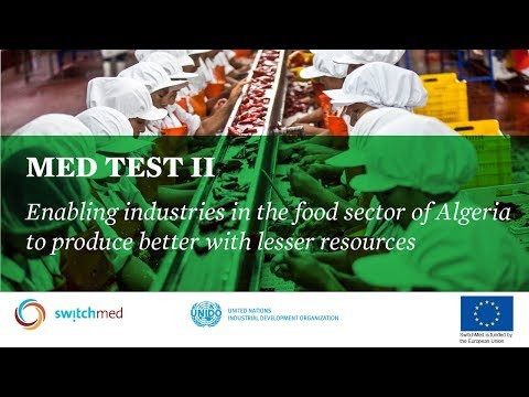 MED TEST II - Resource efficient industries in Algeria