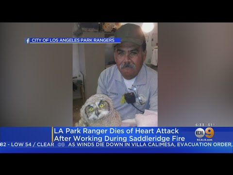 40-Year Employee Of LA City Park Rangers Dies Of Heart Attack After Working During Saddle Ridge Fire