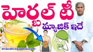 హెర్బల్ టీ మ్యాజిక్ సీక్రెట్ ఇదే? | Herbal TEA Magic Secret | Dr Manthena Satyanarayana Raju Videos