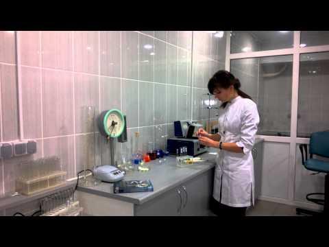Hogyan kezeli a férfiak krónikus prosztatagyulladása