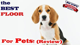 The BEST Floor for Pets! (Review)