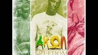 akon ft. elvis white - I promise u