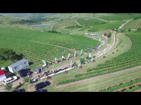 Agro Fest - Dealu Mare, Prahova