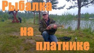 Платная рыбалка в спб и ленобласти