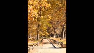 Video Autumn tale