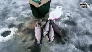 Платная рыбалка новой риге