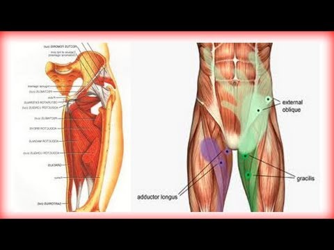 Video Groin rehab and prehab for groin pain and groin pull.