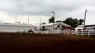 preview picture of video 'Freestyle Riding 2014 Wyandot Co Fair'