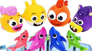 Let's have fun in the water with Baby Shark Ollie and William! Shark Family Water gun game