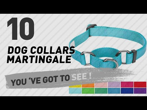 Dog Collars Martingale // Top 10 Most Popular